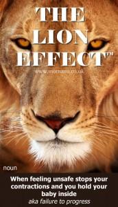 Lion-Effect-Failure-to-progress